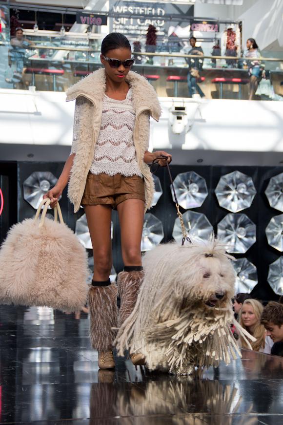 Fur and coats trend